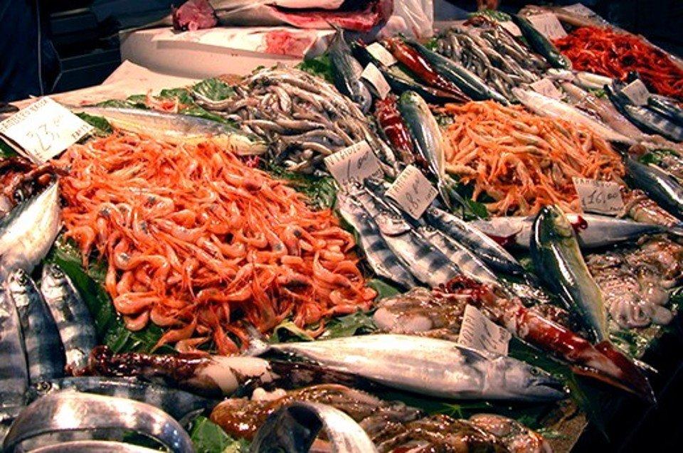 Prodotti ittici: nuove regole dall'Europa