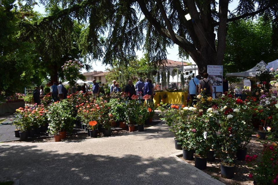 Festa di Primavera e Fiera dell'Orto a Mestre