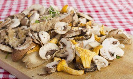 Vendita di funghi in Veneto: a settembre l'esame per l'abilitazione