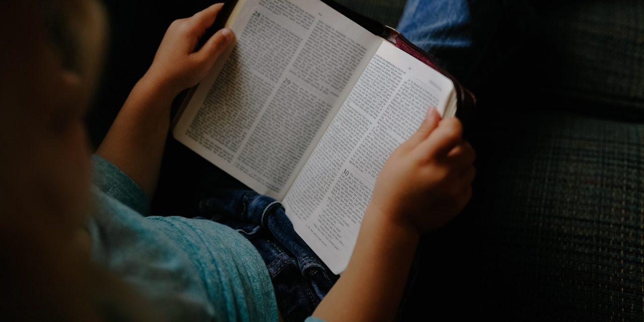 Promozione della lettura: approvata nuova legge alla Camera